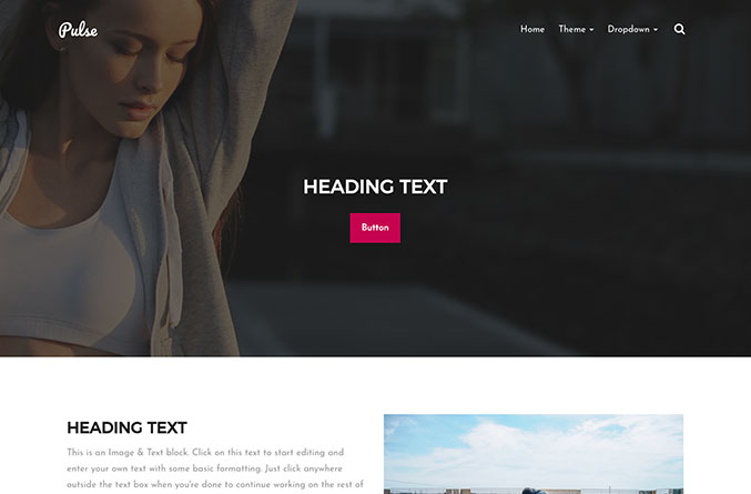 Pulse Website Template